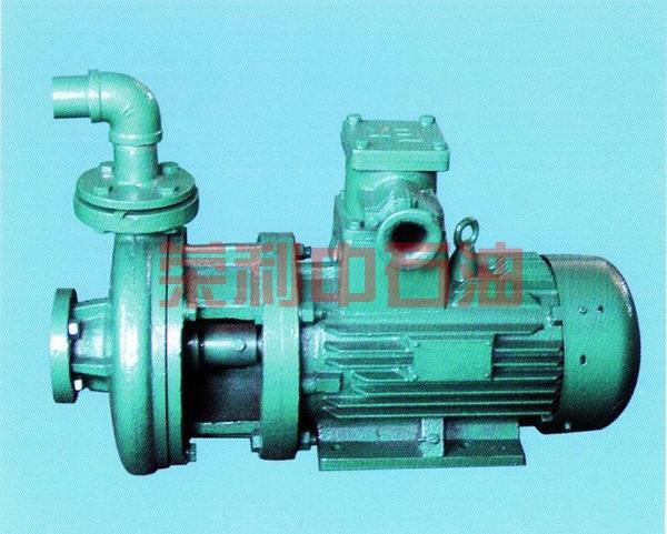 电动喷淋泵
